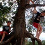 Zvídavci od přírody